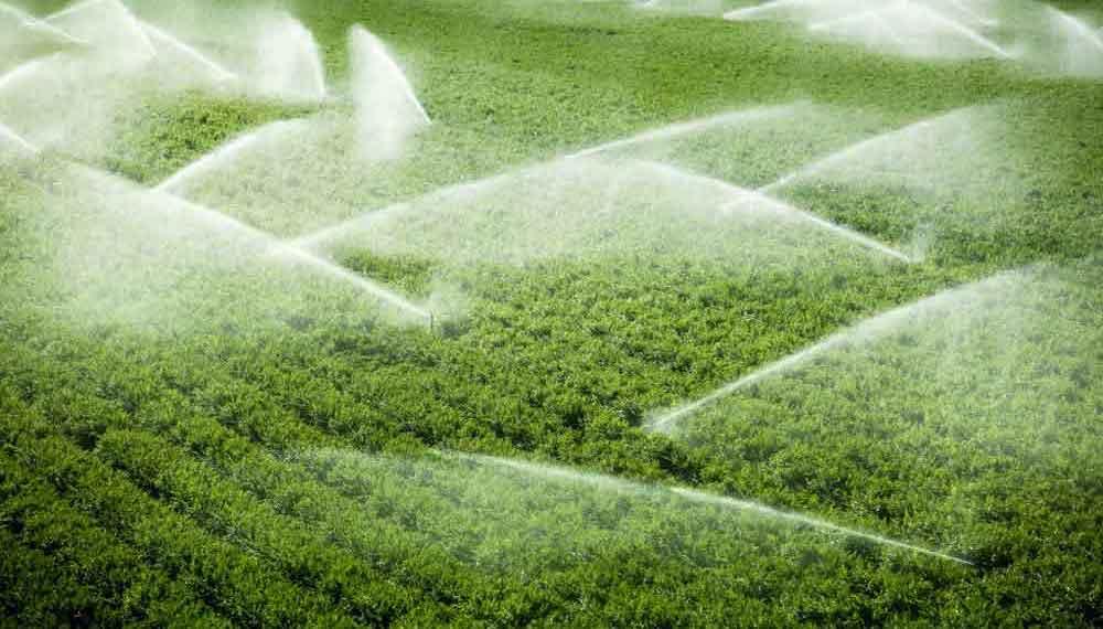 آب شیرین کن کشاورزی